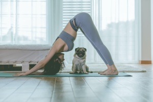 women doing yoga for anxiety at home with a dog