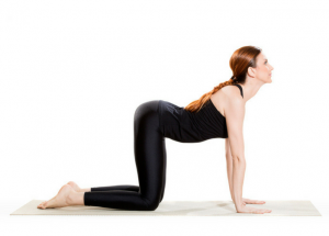 women demonstrating how cat pose should be done