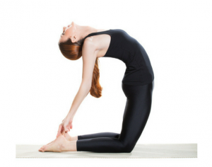 women showing how to properly hold a back bended yoga pose