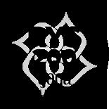 RYS 200 black logo